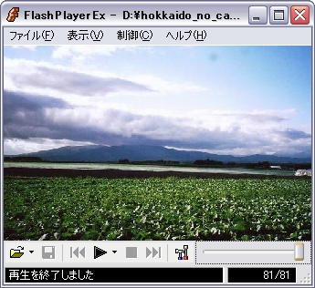 hokkaido_no_cabbage_0001