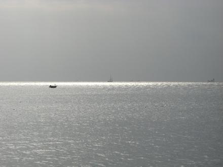 20070103_0005_t