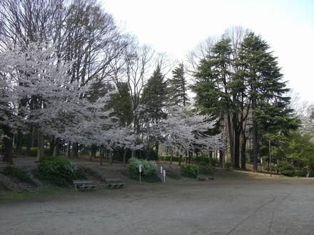 20070405_0004