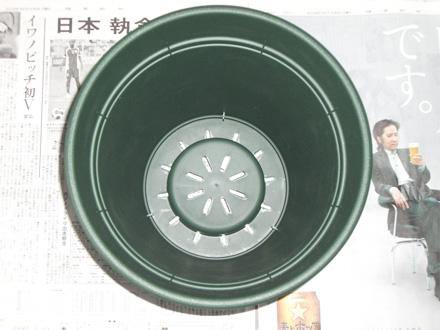 20080608_0006