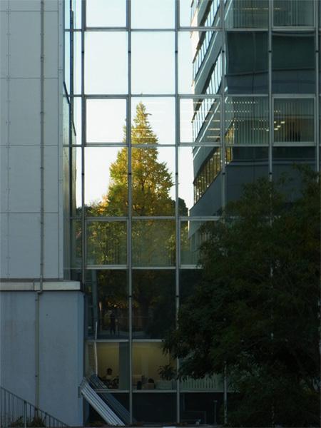 20111210_0001